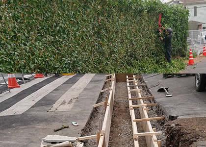 伐採工事型枠工事